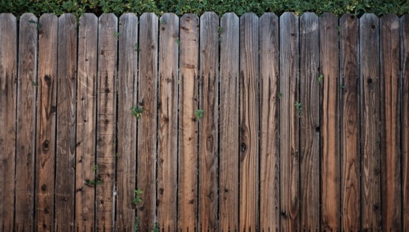 fence-with-neighbors